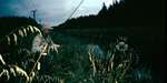 big_020117-new_zealand-flaxy-lakes-channel-Thomas.html
